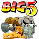 big-5-logo